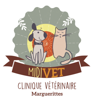 Logo Midivet